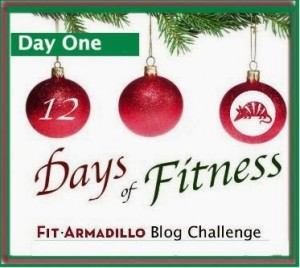 merry christmas everyone today is the first day of the fit armadillo twelve days of fitness blog challenge every day from today through january 5th