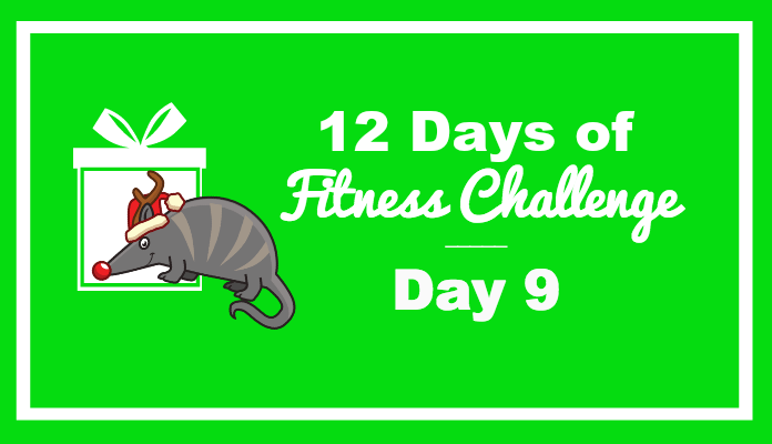 day 9 fitness challenge