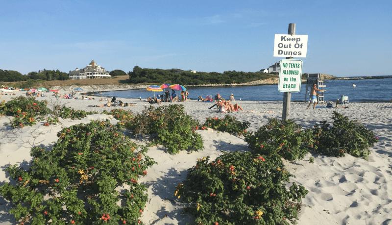 Gooseberry Beach Ocean Drive