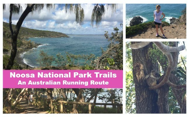 noosa national park running route fit armadillo